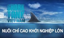 [Shark Tank Việt Nam] Các chuyên gia nói gì về khởi nghiệp & thành công?